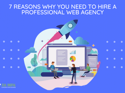 7 Reasons you need to hire a professional web agency